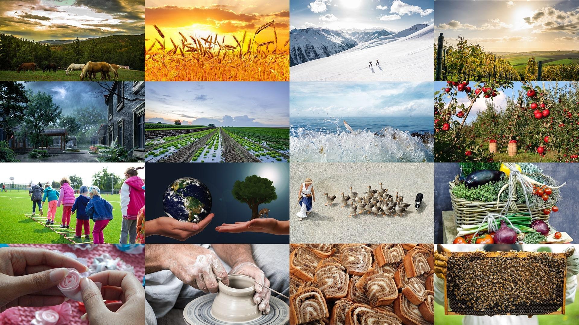 Dobre in  zgledne  podeželske  prakse